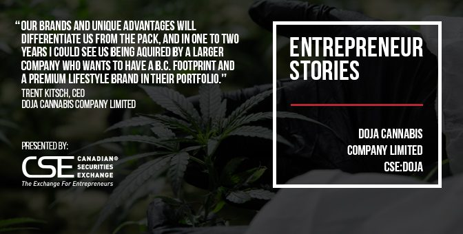 DOJA Cannabis building value quickly with artisanal quality, expert branding